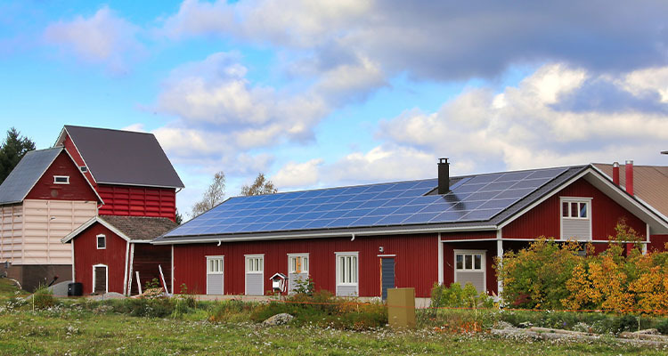 What Is Net-Zero and Sustainable Farming And How Can It Help The Environment?
